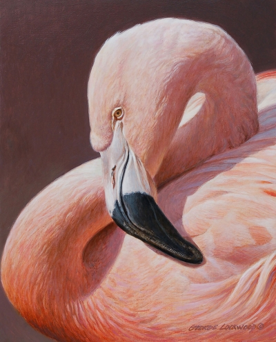 """Soft Light – Flamingo"" by George Lockwood, acrylic on board, 10"" x 8"", Collection of the artist."