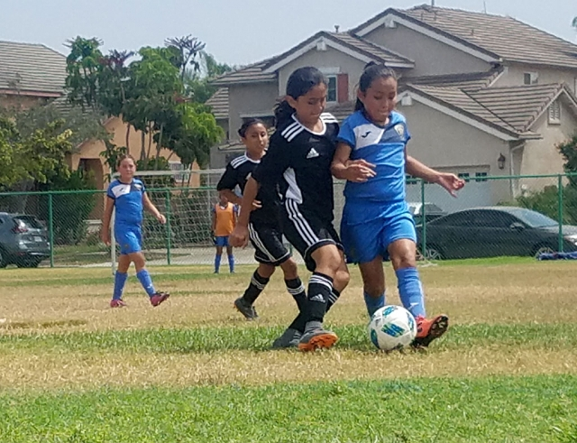 California United's U10Girl Alondra Leon as she tries to steal the ball away from the Royal Puma player. Photos courtesy