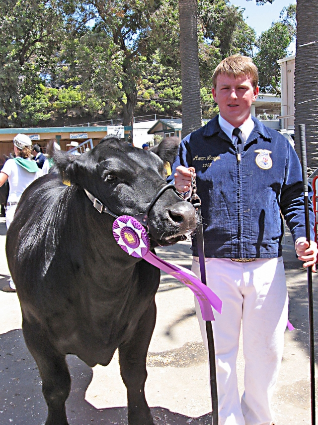 Future Farmer of America's Aaron Largen's steer won Grand Champion Market Steer.