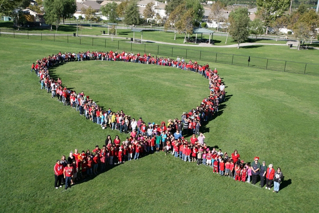 "Mountain Vista Students and Staff are celebrating Red Ribbon and making a school wide commitment to ""Say NO to Drugs""!"
