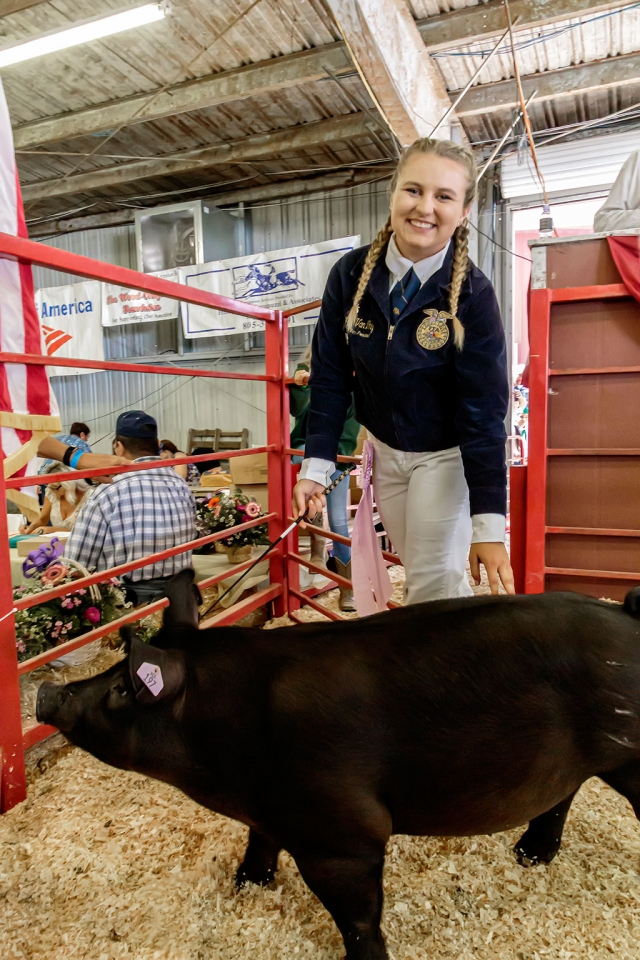 Pictured is Alexis Van Why who raised a 242 pound pig, named Bubba, and was awarded Reserve FFA Champion. Bubba was bought for $60 a pound at the auction. Total: $14,520.