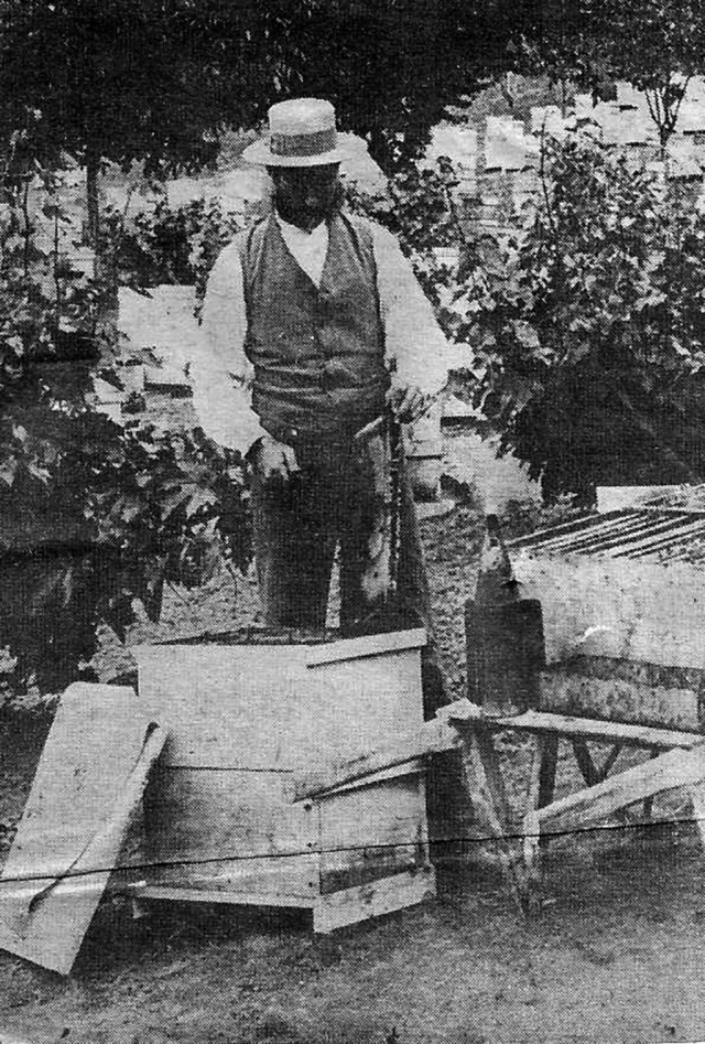 James F. Mclntyre in the 1900's smoking his bee hives. Photos courtesy Fillmore Historical Museum.