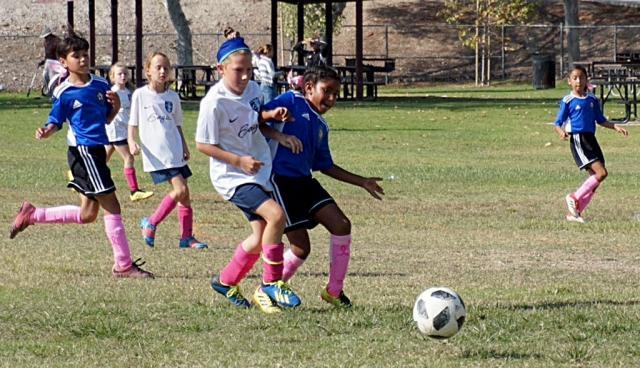 Photos courtesy Nancy Magana.Oxnard County Soccer League – Saturday, October 13: 