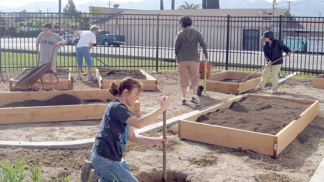 "Mrs. Castro digging a hole to plant a peach tree, as Mrs. Anderson, Ms, Bautista, Angel Rodriguez, and Mrs. Gonzalez fill planter boxes. Mrs. Castro's target class decided to plant a peach tree after reading, "" James and the Giant Peach""."