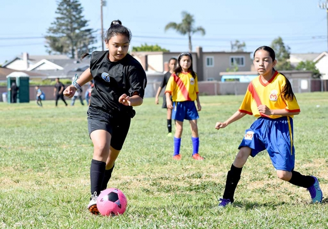 The California United U-11 team continued their winning ways with an impressive 7-0 showcase over Morelia this past weekend. Leading the offense this week was Jadon Rodriguez with a hat trick (3), Fatima Alvarado (pictured above) with 2 goals and 1 assist, while Jessica Rodriguez and Mikayla McKenzie each had 1 goal as well. The defense once again played well as they notched yet another shut out behind goalies Gaby Martinez and Alexis Pina. (pictured below) The California United U-13 boys' team played this weekend versus Real So. Cal which resulted in a 2-3 loss for CU. Tony De La Cruz and Diego Alcaraz each had 1 goal in the game while Jathon Magana and Adrian Perez had one assist apiece. Submitted By Coach Tony Hernandez.