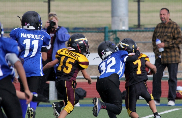 Bears Pee Wee #32 makes tackle in the back field. Photos courtesy Crystal Gurrola