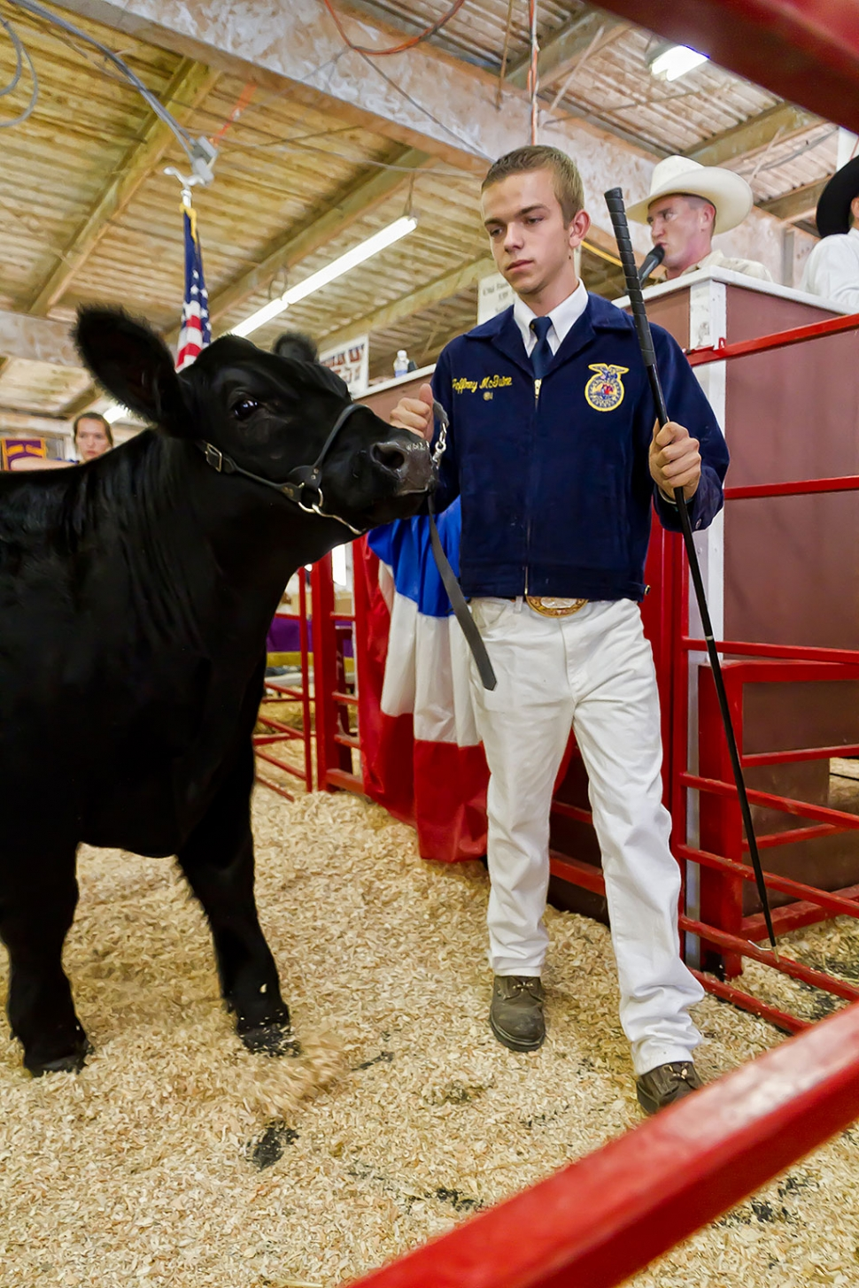 Jeffrey McGuire, 16, Fillmore FFA, raised a 1,345 lb. market steer that was awarded FFA Reserve Grand Champion.