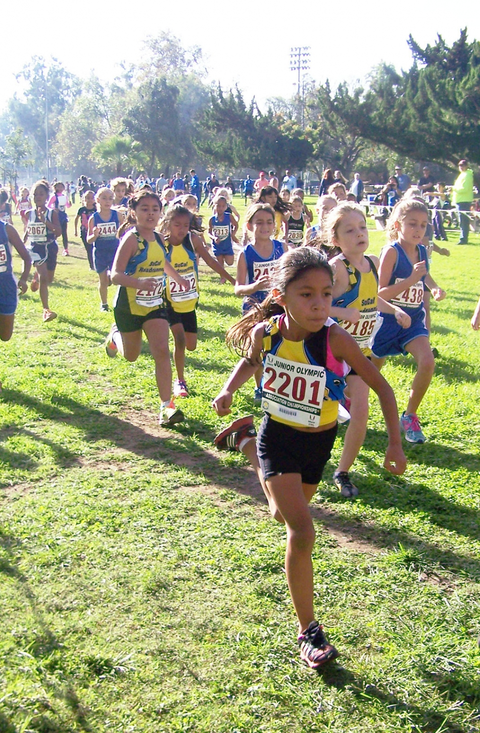 Niza Laureano (bib #2201) leads the pack at the 2014 USATF Southern California Association Junior Olympic Cross Country Championships in Arcadia, California.