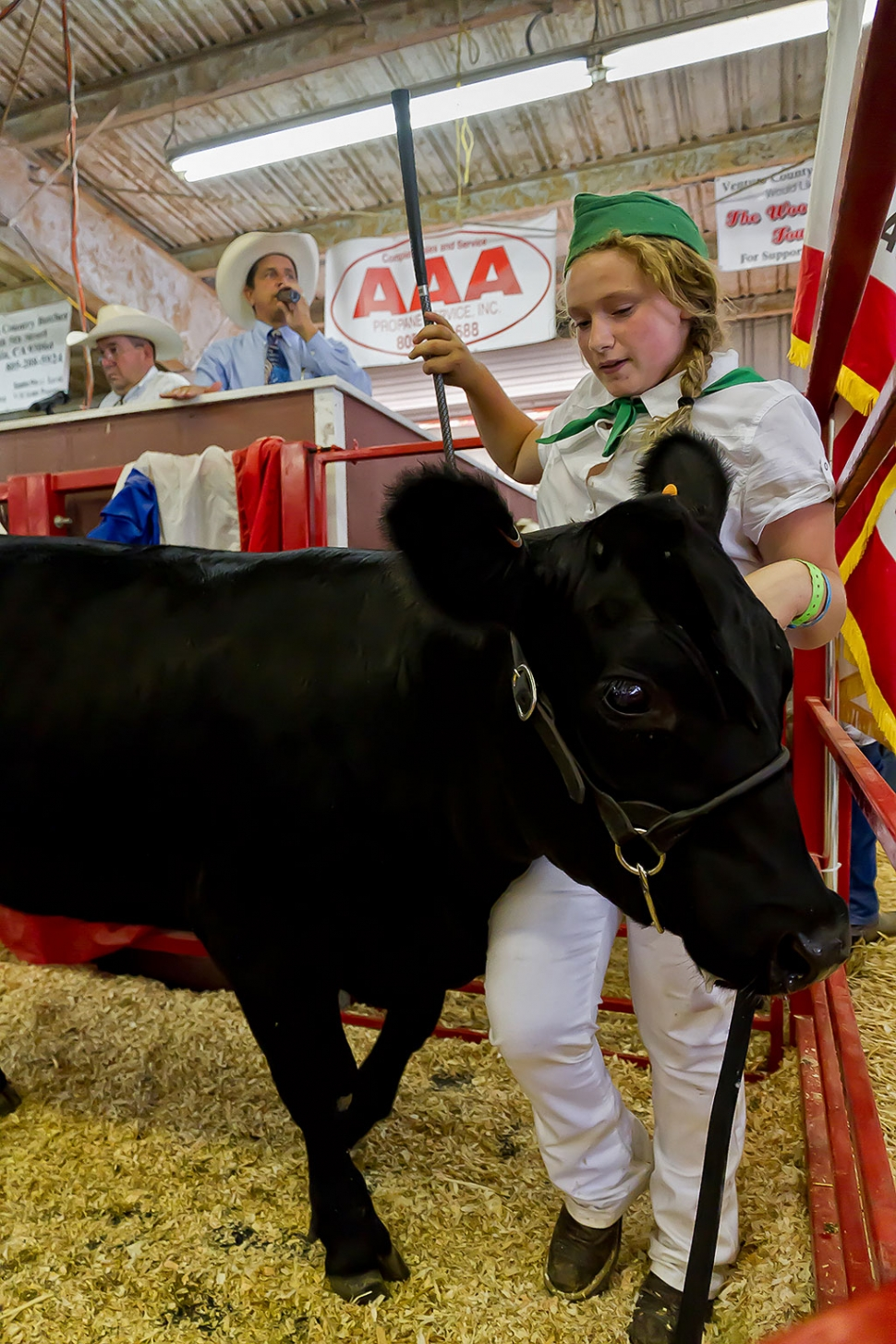Samantha Points, 14, Bardsdale 4-H, raised a replacement heifer that was awarded 4-H Reserve Grand Champion and received a top bid of $3,000 at the auction.