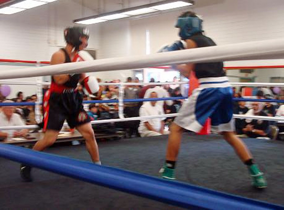 p information sport clubs boxing