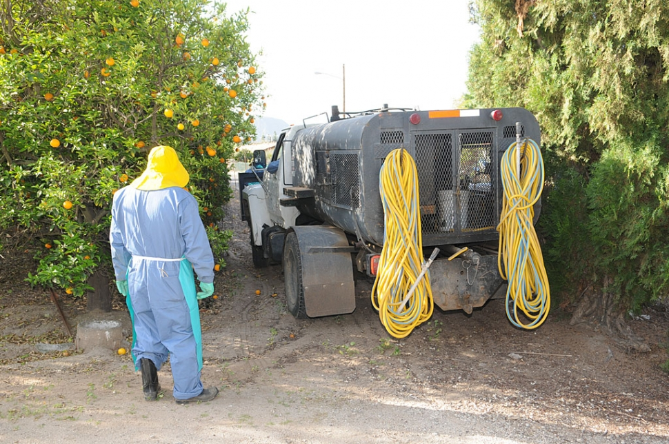 Warrant served, spraying begins. Sheriff's deputies served a warrant Tuesday on Fillmore resident Herbert Haase to enter, inspect, and treat his orange grove at Third and B Streets for a citrus pest, Asian Citrus Psyllid. A County worker waits to begin the spraying.